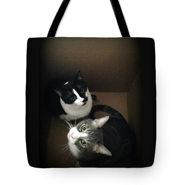 Cats In The Box Tote Bag