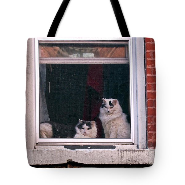 Cats On A Sill Tote Bag by Randi Shenkman
