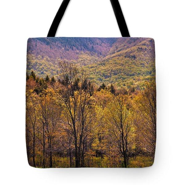 Catskill Color Tote Bag