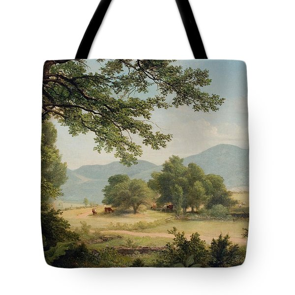 Catskill Meadows In Summer Tote Bag by Asher Brown Durand
