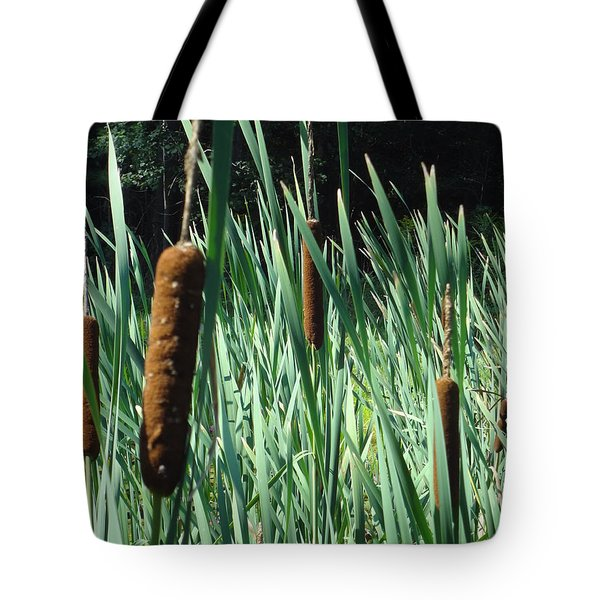 Cattails A Plenty Tote Bag by Michael Porchik