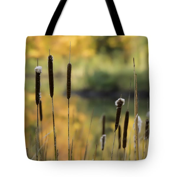 Cattails And Colors Tote Bag