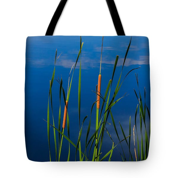 Cattails At Overholster Tote Bag by Doug Long