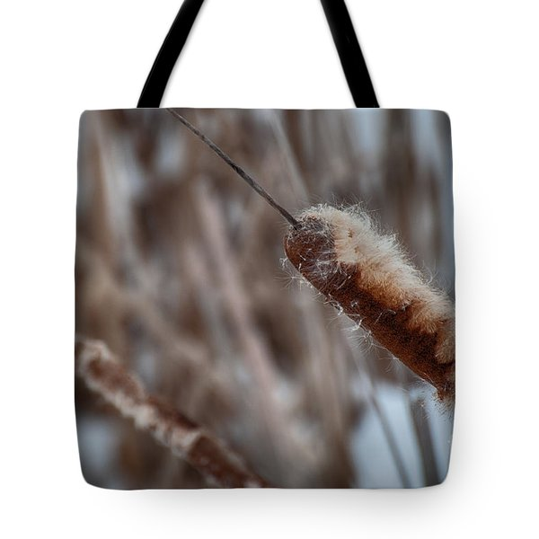 Tote Bag featuring the photograph Cattails by Bianca Nadeau