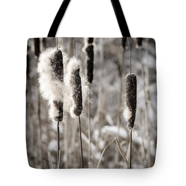 Cattails In Winter Tote Bag by Elena Elisseeva