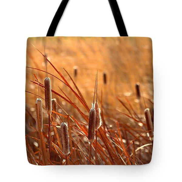 Tote Bag featuring the photograph Cattails  by Lynn Hopwood