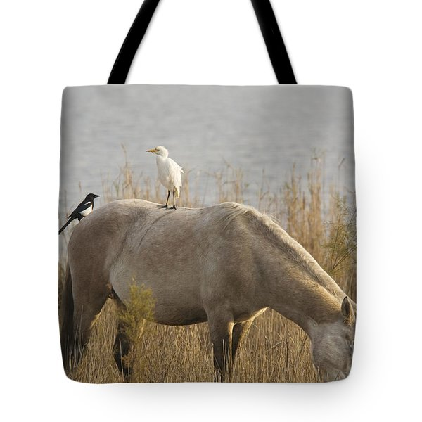 Cattle Egret And Magpie Pica Pica Tote Bag