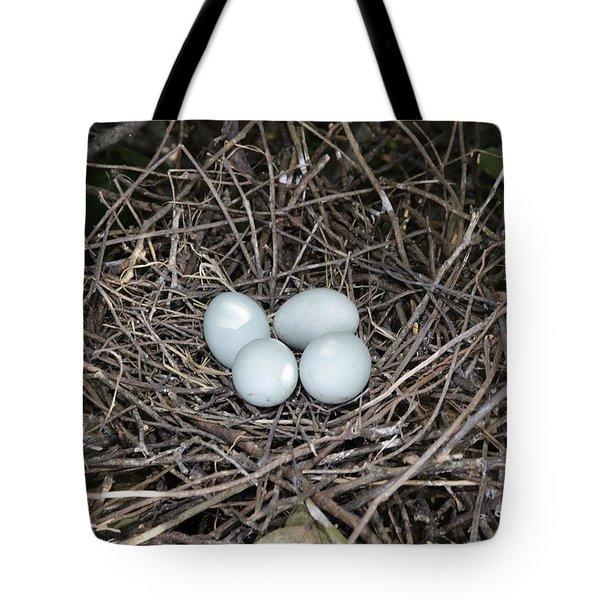 Cattle Egret Eggs Tote Bag