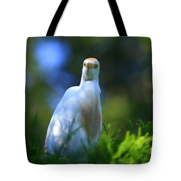 Cattle Egret Eyes Tote Bag