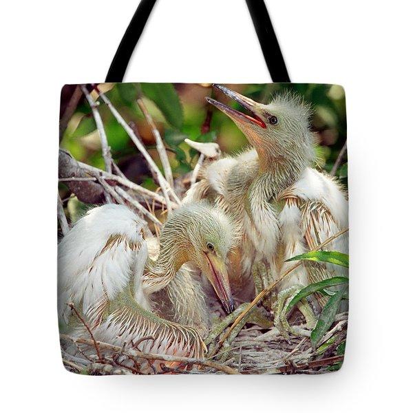 Cattle Egret Nestlings Tote Bag