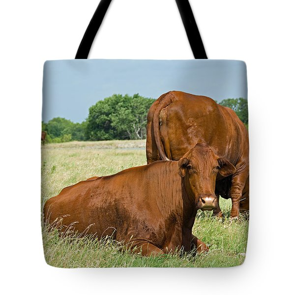 Tote Bag featuring the photograph Cattle Grazing In Field by Charles Beeler
