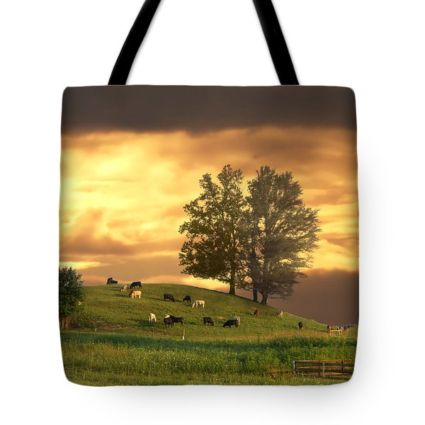 Cattle On A Hill Tote Bag