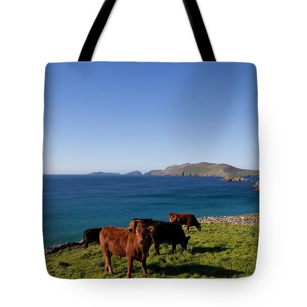 Cattle With Distant Blasket Islands Tote Bag