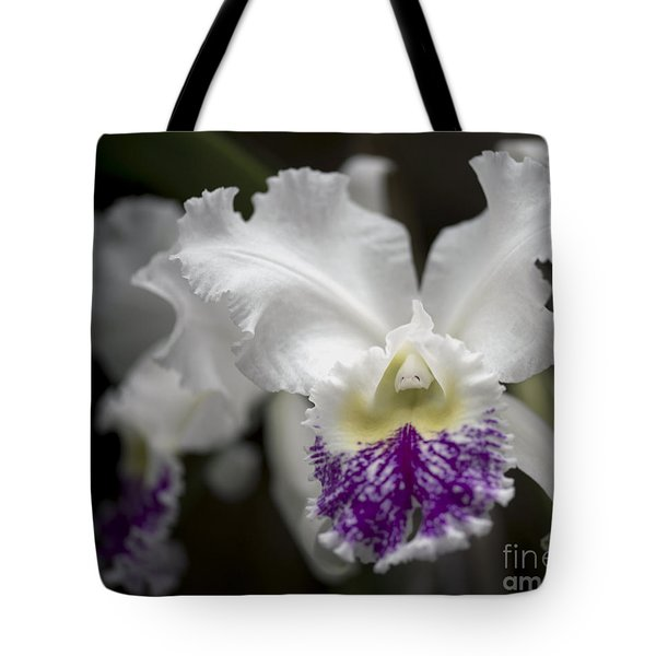 Cattleya Catherine Patterson Full Bloom Tote Bag by Terri Winkler
