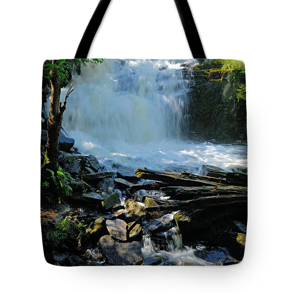 Cattyman Falls 2 Tote Bag by Larry Ricker