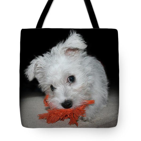 Caught In The Act Tote Bag by Terri Waters