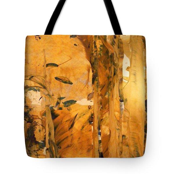 Cave Of Gold Tote Bag by Nancy Kane Chapman