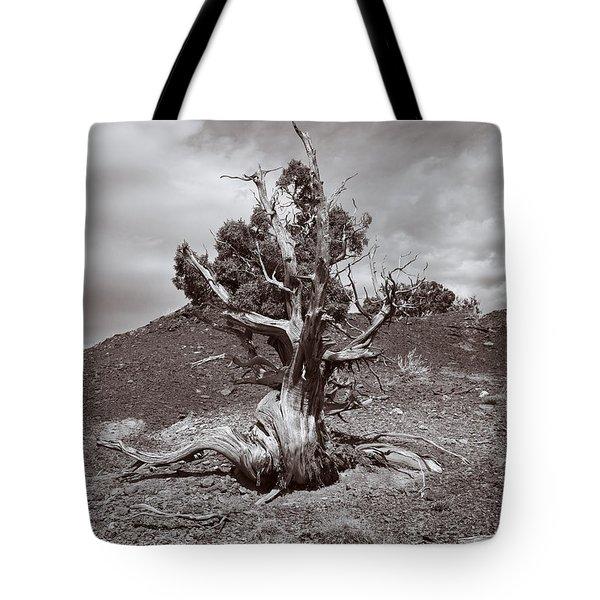 Cedar Landscape Tote Bag