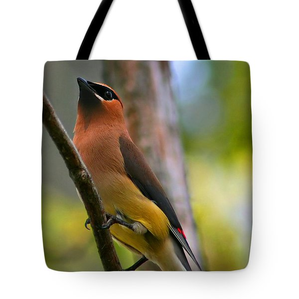 Cedar Wax Wing Tote Bag by Roger Becker