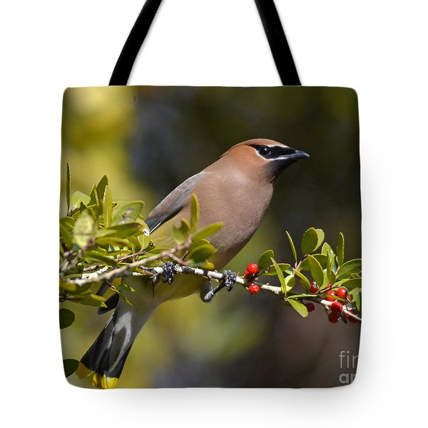 Tote Bag featuring the photograph Cedar Waxwing And Red Berries by Kathy Baccari