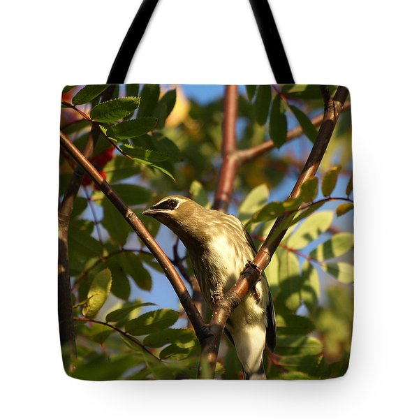 Tote Bag featuring the photograph Cedar Waxwing by James Peterson