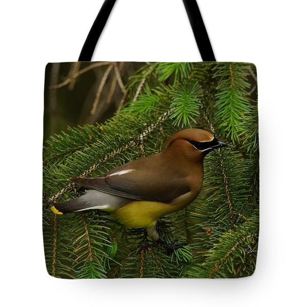 Tote Bag featuring the photograph Cedar Waxwing by Steven Clipperton