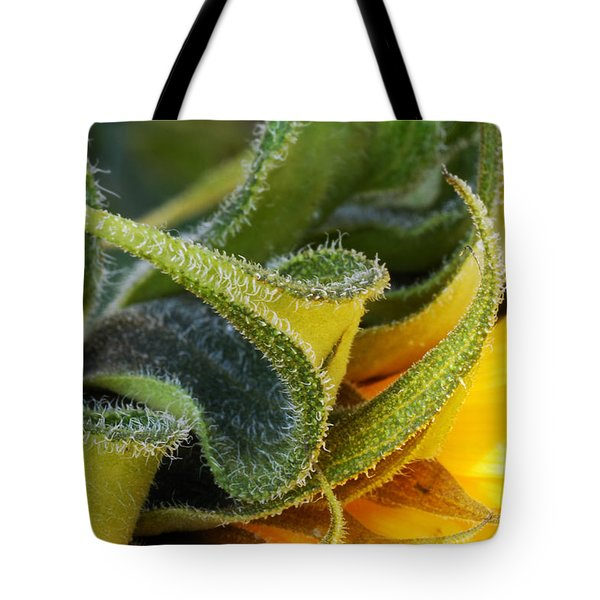 Tote Bag featuring the photograph Celebration Sunflower by Wendy Wilton