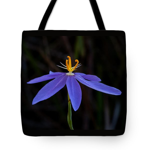 Celestial Lily Tote Bag by Paul Rebmann