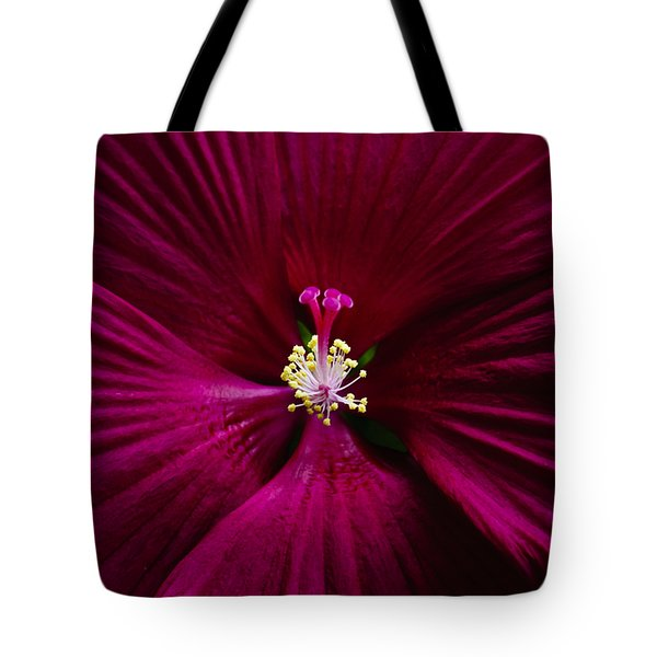 Center Folds Tote Bag