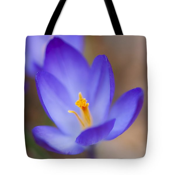 Center Of Attention Tote Bag by Jean-Pierre Ducondi