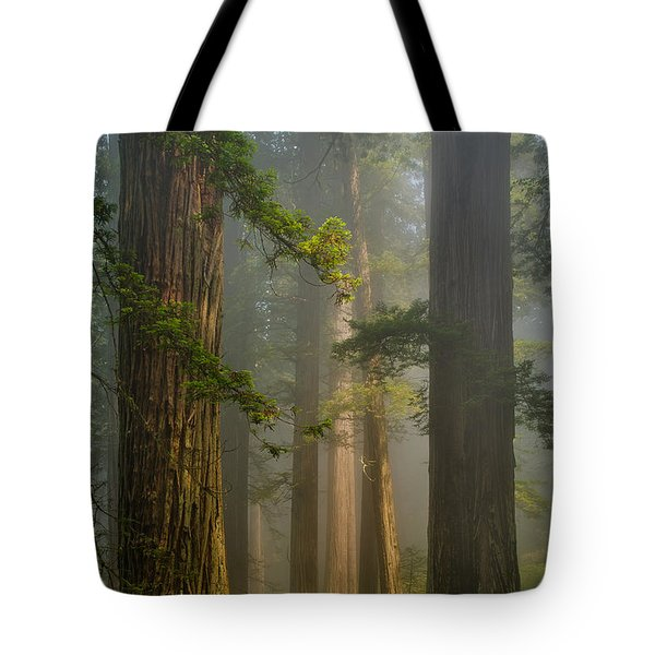 Center Of Forest Tote Bag