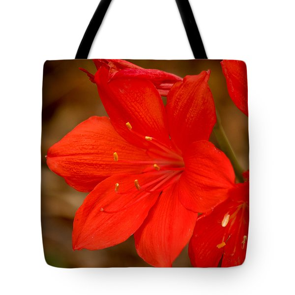 Center Stage Tote Bag by Art Block Collections