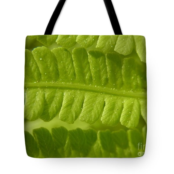 Tote Bag featuring the photograph Centering by Agnieszka Ledwon