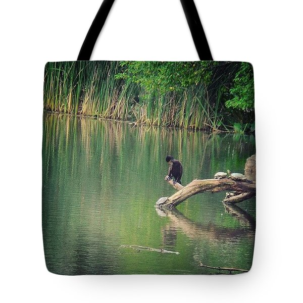 Central Park Snooze Tote Bag