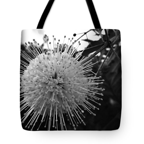 Cephalanthus Occidentalis In Black And White 2 Tote Bag by K Simmons Luna