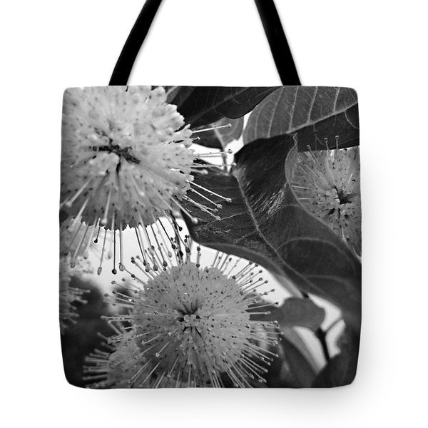 Cephalanthus Occidentalis In Black And White Tote Bag by K Simmons Luna