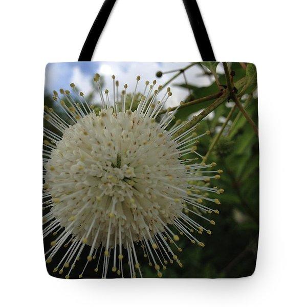 Cephalanthus Occidentalis The Button Bush  Tote Bag
