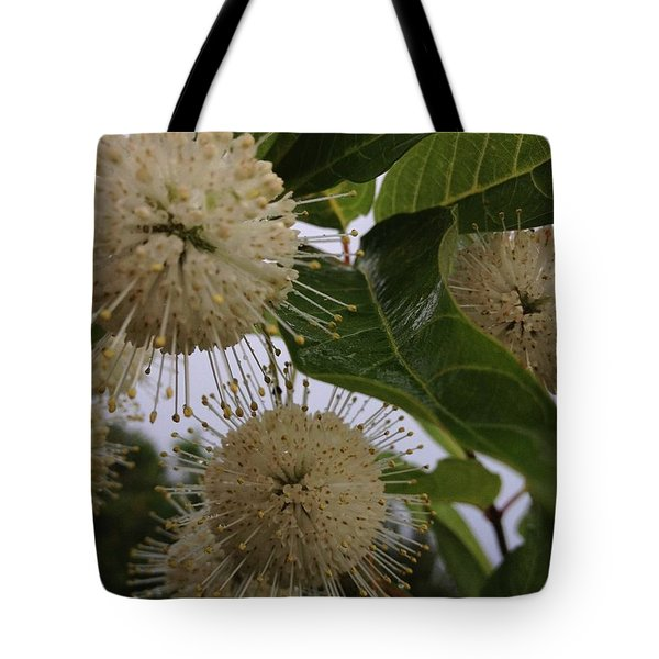 Cephalanthus Occidentals The Button Bush 2 Tote Bag by K Simmons Luna