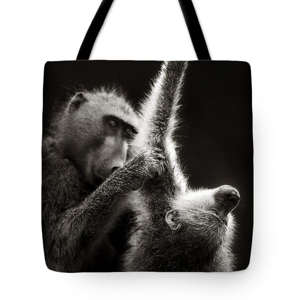 Chacma Baboons Grooming Tote Bag by Johan Swanepoel