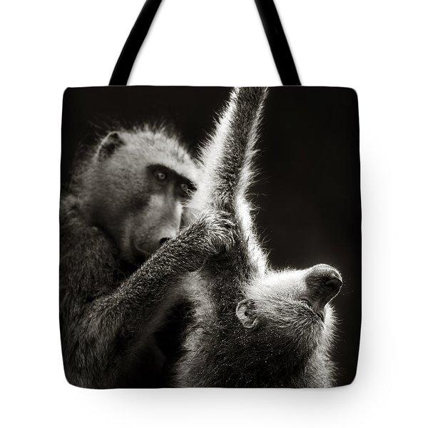 Chacma Baboons Grooming Tote Bag