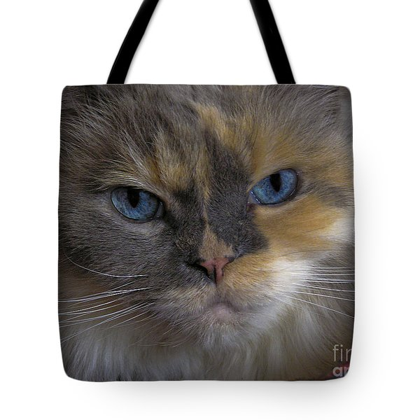 Chai Tote Bag by Sandi Mikuse