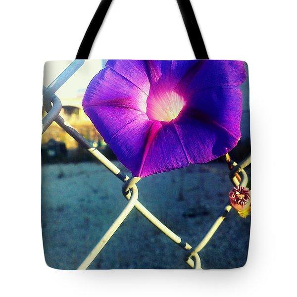 Chained Splendor Tote Bag by James Aiken