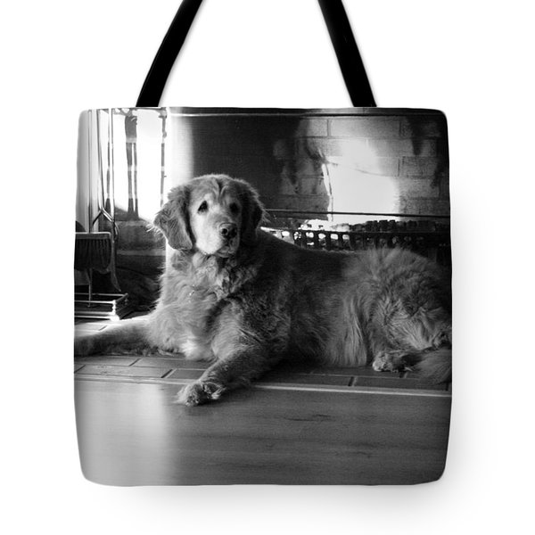 Tote Bag featuring the photograph Chance by Meaghan Troup