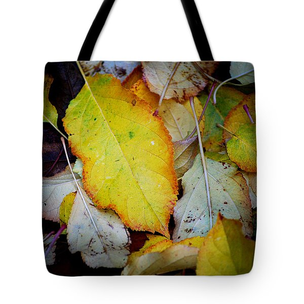 Change Of Season Tote Bag by Michelle Wrighton