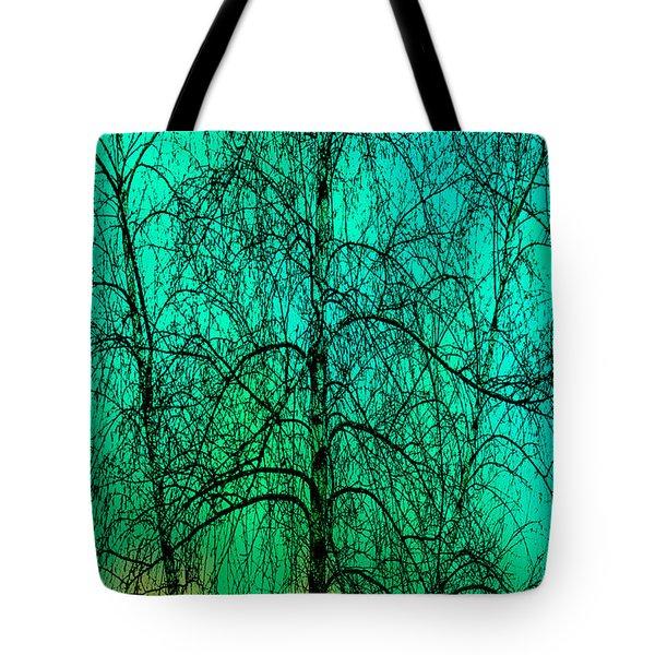 Change Of Seasons Tote Bag by Bob Orsillo