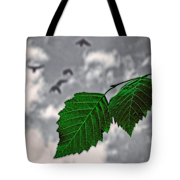 Changes Tote Bag by Bob Orsillo