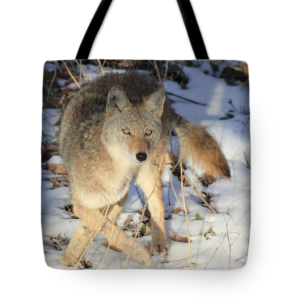 Changing Direction Tote Bag