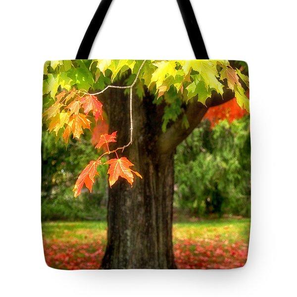 Changing Sugar Maple Tote Bag