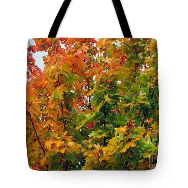 Tote Bag featuring the photograph Changing Times by Tikvah's Hope