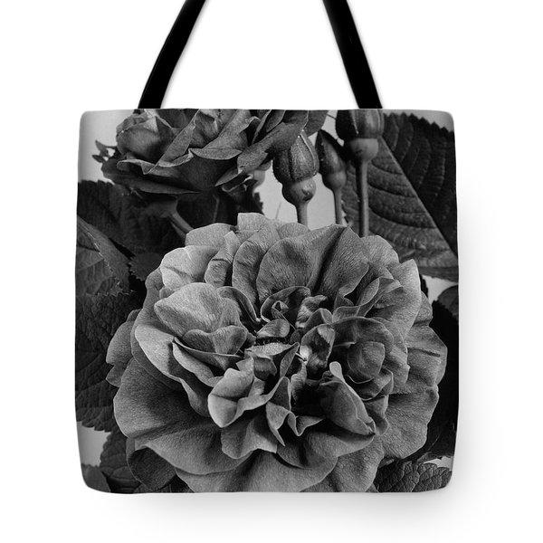 Charles Frederic Worth Rose Tote Bag